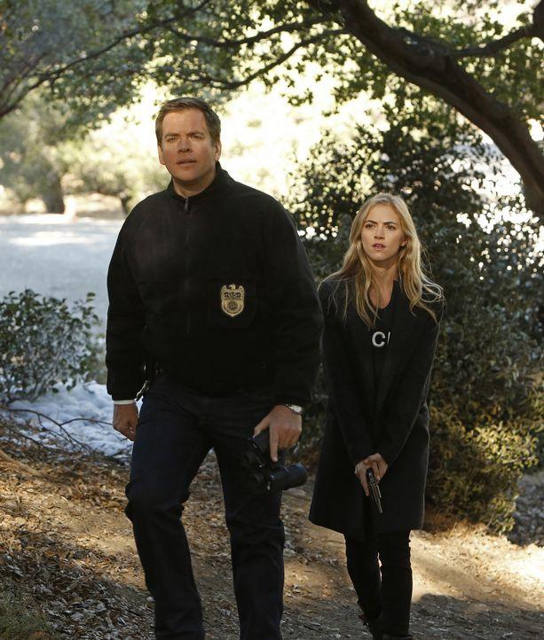 Special Agent Anthony DiNozzo (Michael Weatherly, l.) und Ellie Bishop (Emily Wickersham, r.) müssen die Hilfe des Ministeriums für Verteidigung in... - Bildquelle: CBS Television