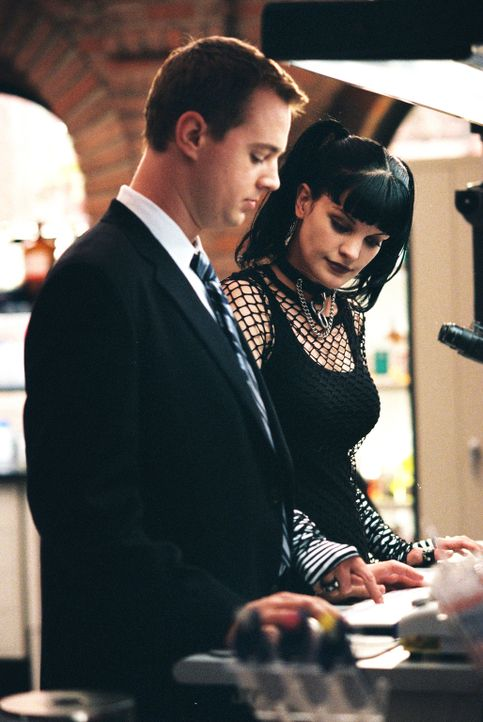 Arbeiten an einem schwierigen Fall: Abby (Pauley Perrette, r.) und Tim McGee (Sean Murray, l.) ... - Bildquelle: CBS Television