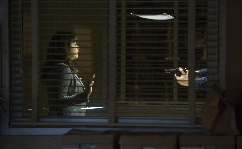 Als Baez (Marisa Ramirez) dem offenbar tiefunglücklichen und verwirrten Mann eine einstweilige Verfügung erteilt, zückt der eine Waffe und kommt ihr... - Bildquelle: Jeff Neira 2014 CBS Broadcasting Inc. All Rights Reserved.