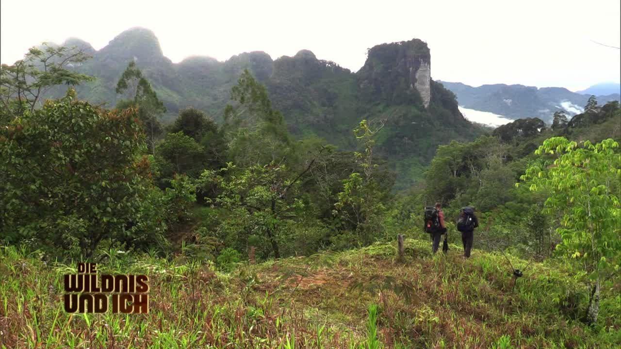 Gress in Papua Neuguinea3 - Bildquelle: kabel eins