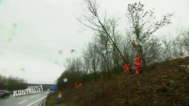Achtung Kontrolle - Achtung Kontrolle! - Thema U.a.: Baum Fällt - Aber Die Autobahnmeisterei Hat Alles Unter Kontrolle