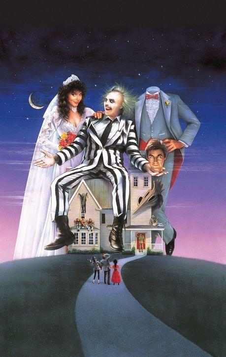 Nach einem tödlichen Autounfall landen Barbara (Geena Davis, l.) und Adam (Alec Baldwin, r.) nicht etwa im Himmel, sondern in der Dachkammer ihres H... - Bildquelle: Warner Bros.
