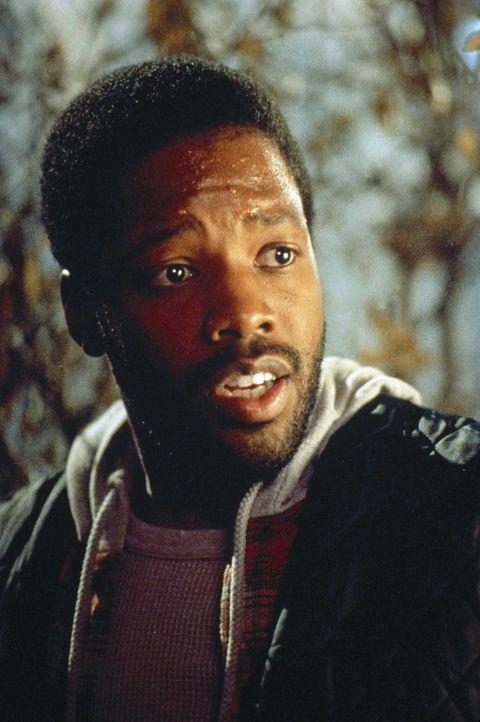 Seit einiger Zeit sucht der Vampir-Gehilfe Julius (Kadeem Hardison) verzweifelt nach einer Frau für Max, die ihm den notwendigen Stammhalter gebär... - Bildquelle: Paramount Pictures