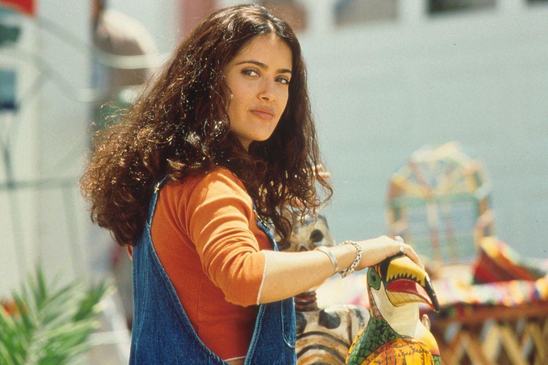 Als Isabel (Salma Hayek) ungeplant schwanger wird, reagiert ihre Familie etwas stürmisch ... - Bildquelle: Columbia Tri-Star