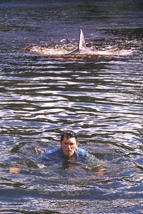Was weder Gauner noch Geologen ahnen: Ein Menschen fressender Bullenhai, der gefährlichste Hai der Welt, der im Süßwasser lebt, hat hier sein Rev... - Bildquelle: 2003 Sony Pictures Television Inc. All Rights Reserved.