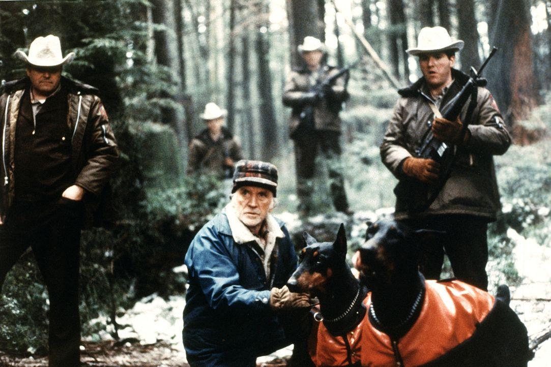 Aus eher nichtigem Anlass wird der im Krieg ausgezeichnete Held Rambo von der Polizei gejagt. In die Enge getrieben, liefert er der Staatsgewalt ein... - Bildquelle: 1982 STUDIOCANAL. All Rights Reserved.