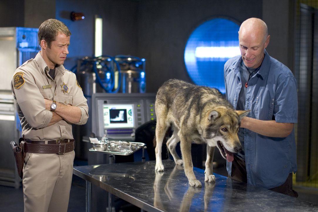 Haben mit einem dubiosen medizinischen Problem zu tun: Carter (Colin Ferguson, l.) und Taggert (Matt Frewer, r.) ... - Bildquelle: Universal Television