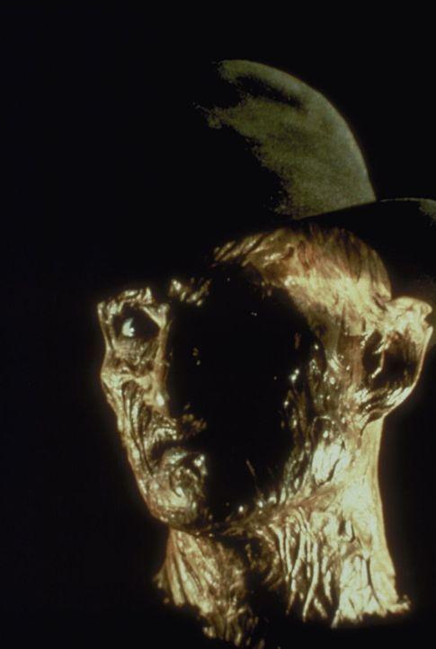 Freddy Krüger (Robert Englund), der böse Geist aus der Elm Street, ist zurückgekehrt ... - Bildquelle: New Line Cinema