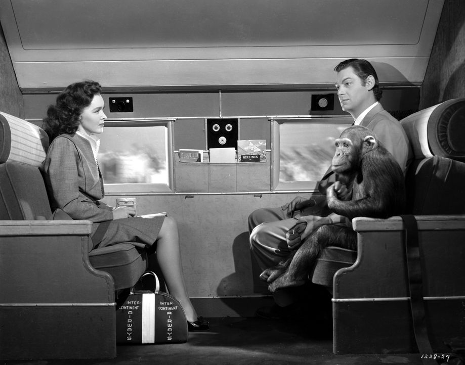 Jane (Maureen O'Sullivan, l.); Tarzan (Johnny Weissmuller, r.) - Bildquelle: 1942 Warner Bros. Entertainment Inc. All Rights Reserved.