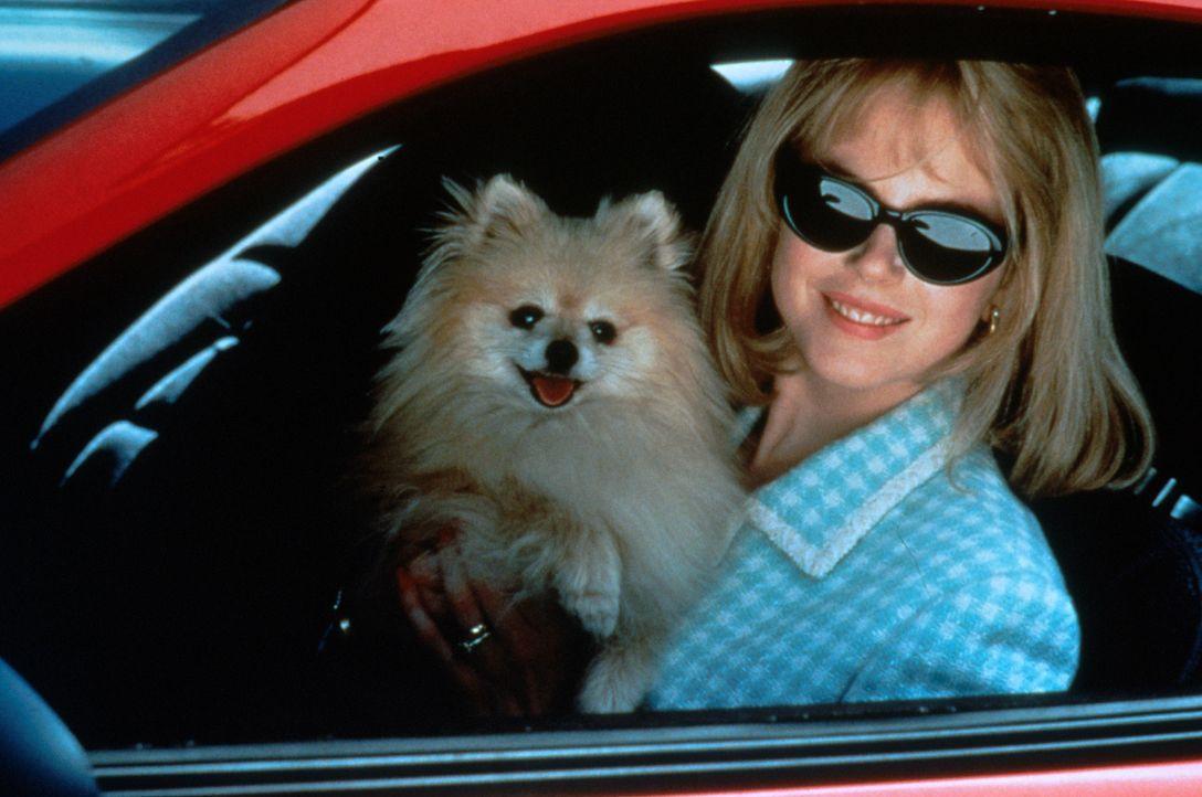 """""""Du bist ein Niemand, wenn Du nicht im Fernsehen warst."""" Um jeden Preis will Suzanne Stone (Nicole Kidman) ihr Lebensmotto in die Tat umsetzen und K... - Bildquelle: Columbia Pictures"""
