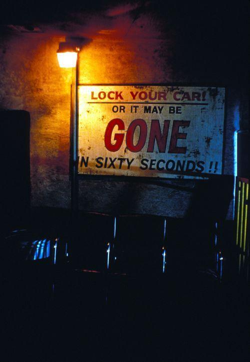 ...wie wahr, wenn Memphis und seine Bande in der Nähe sind ... - Bildquelle: Touchstone Pictures