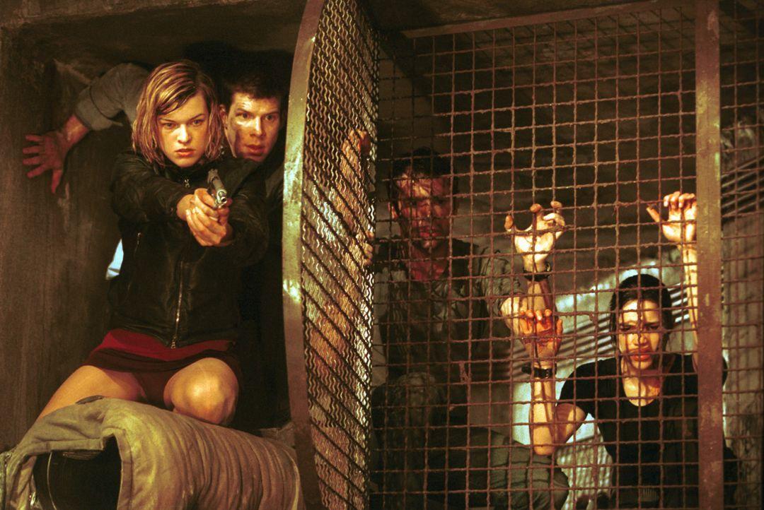 Verzweifelt versuchen sich Alice (Milla Jovovich, l.), Matt Addison (Eric Mabius, 2.v.l.), Spence Parks (James Purefoy, 2.v.r.) und Rain Ocampo (Mic... - Bildquelle: Constantin Film Verleih GmbH