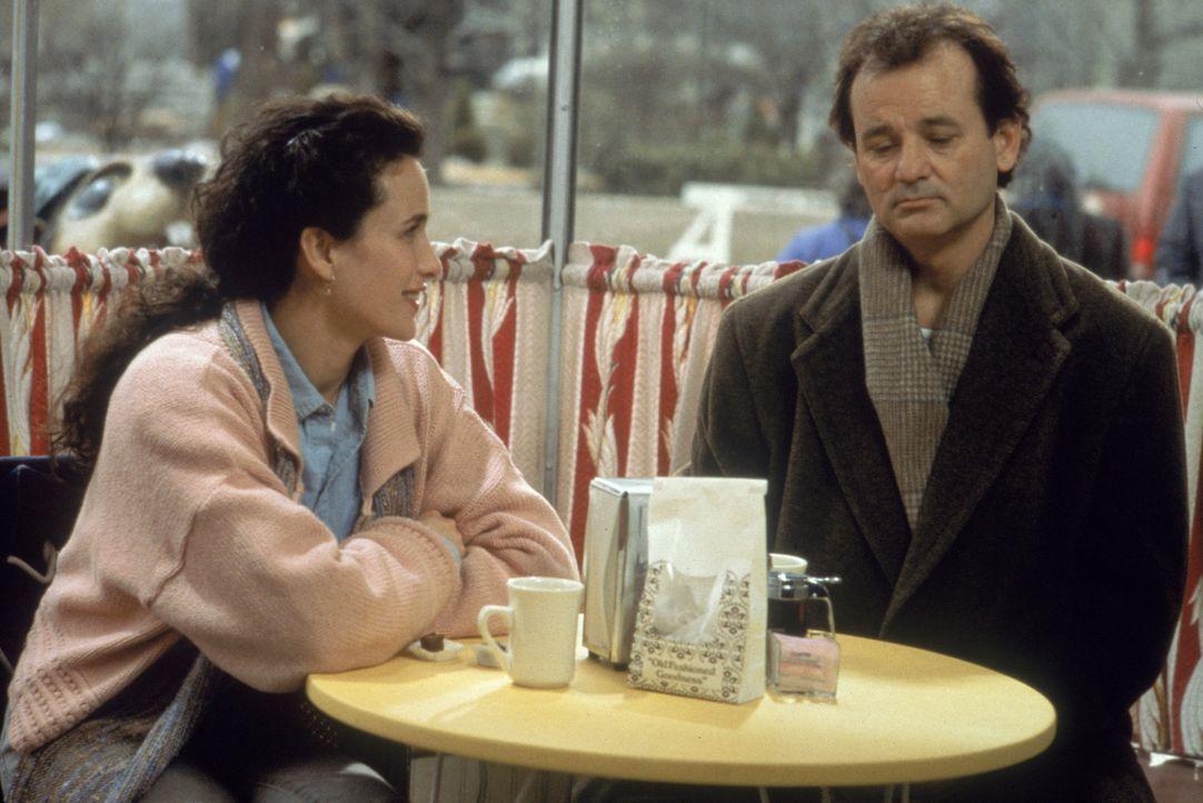 Phil (Bill Murray, r.) ist am Ende. Der 2. Februar lässt ihn nicht mehr los. Rita (Andie MacDowell, l.) betrachtet ihren resignierten Kollegen alle... - Bildquelle: Columbia TriStar