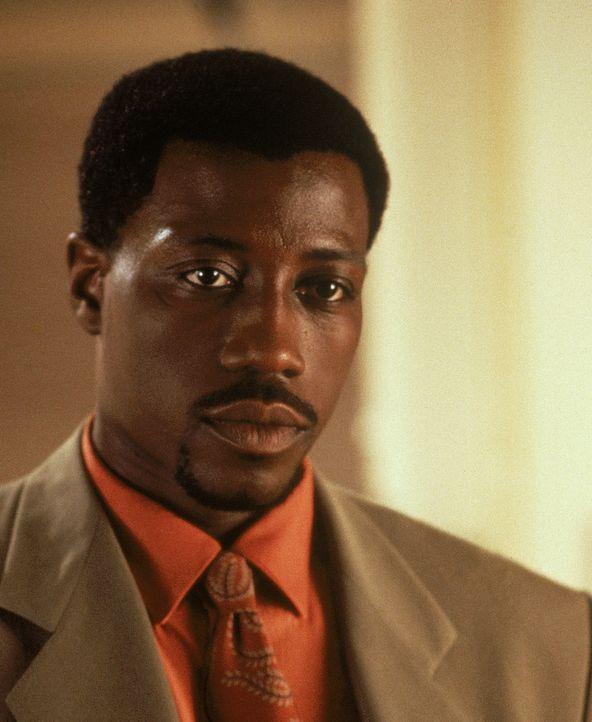 Der junge Detective Web Smith (Wesley Snipes) wird mit einem Fall konfrontiert, der ihm einiges Kopfzerbrechen bereitet ... - Bildquelle: 1993 Twentieth Century Fox Film Corporation. All rights reserved.