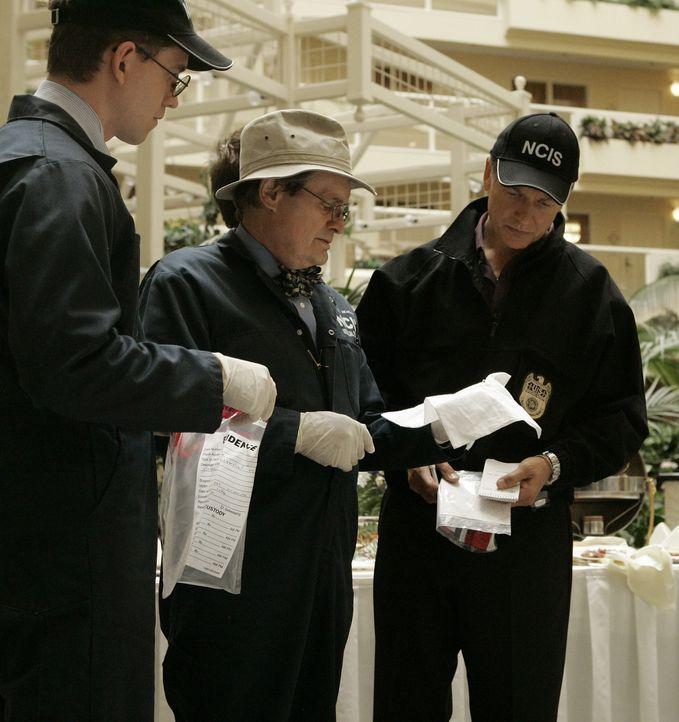 Gemeinsam arbeiten Jimmy Palmer (Brian Dietzen, l.), Gibbs (Mark Harmon, r.) und Ducky (David McCallum, M.) an einem äußerst verzwickten Fall ... - Bildquelle: CBS Television