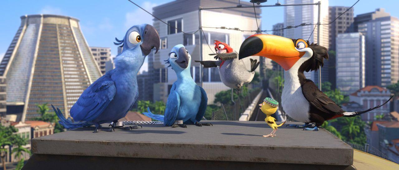Gemeine Vogelhändler wollen die kostbaren Papageien Blue (l.) und Jewel (2.v.l.) einfangen. Und plötzlich finden sie sich gemeinsam mit ihren Freund... - Bildquelle: Blue Sky Studios 2011 Twentieth Century Fox Film Corporation. All rights reserved.