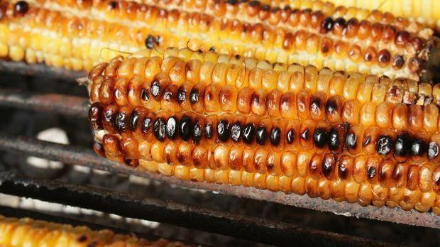 Maiskolben grillen 2