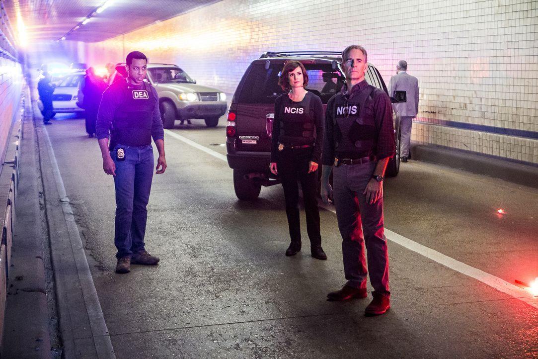 Pride (Scott Bakula, r.), Brody (Zoe McLellan, 2.v.r.) und der Rest des Teams verfolgen die Spur von gestohlenem TNT der Navy zu einem Drogenring, d... - Bildquelle: Skip Bolen 2016 CBS Broadcasting, Inc. All Rights Reserved / Skip Bolen