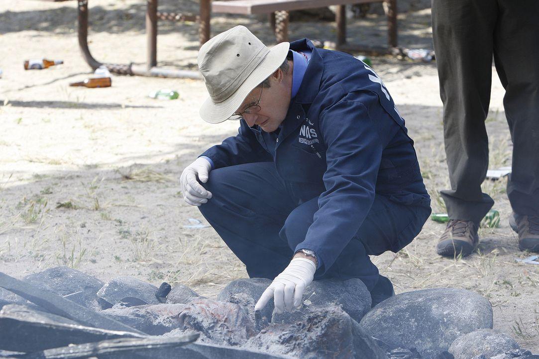 Special Agent Lara Macy wird tot aufgefunden. Ducky (David McCallum) und seine Kollegen beginnen mit den Ermittlungen ... - Bildquelle: CBS Television