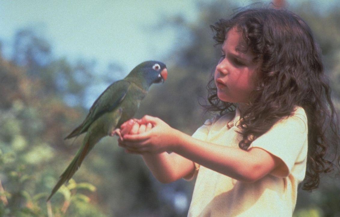 Weil der gescheite Papagei Paulie die kleine Marie (Hallie Kate Eisenberg, r.) einfach plappern lässt, kann sie schon bald ihren Sprachfehler ablege... - Bildquelle: DreamWorks
