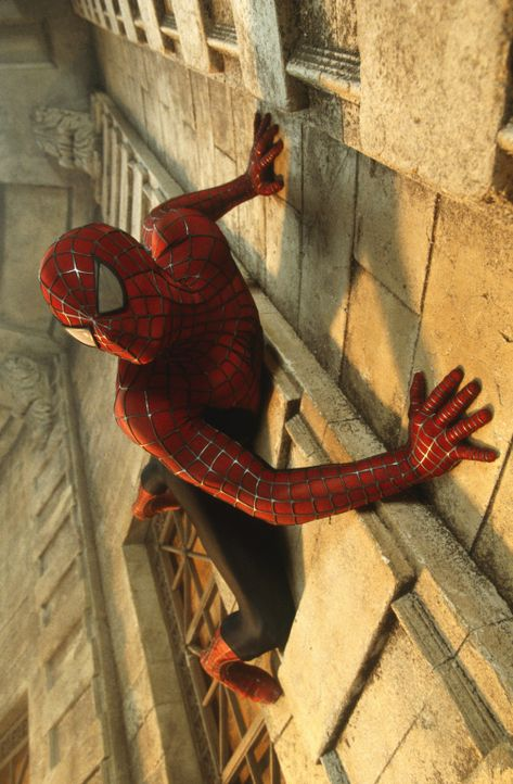 Seine Sinne schärfen sich, wenn Gefahr droht. Er kann selbst die steilsten Wände hochklettern und unglaubliche Distanzen überspringen. Und er ist... - Bildquelle: 2003 Sony Pictures Television International