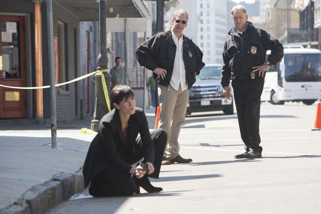 Auf den Spuren des Täters in New Orleans: Merri (Zoe McLellan, l.), Pride (Scott Bakula, M.) und Gibbs (Mark Harmon, r.) ... - Bildquelle: CBS Television