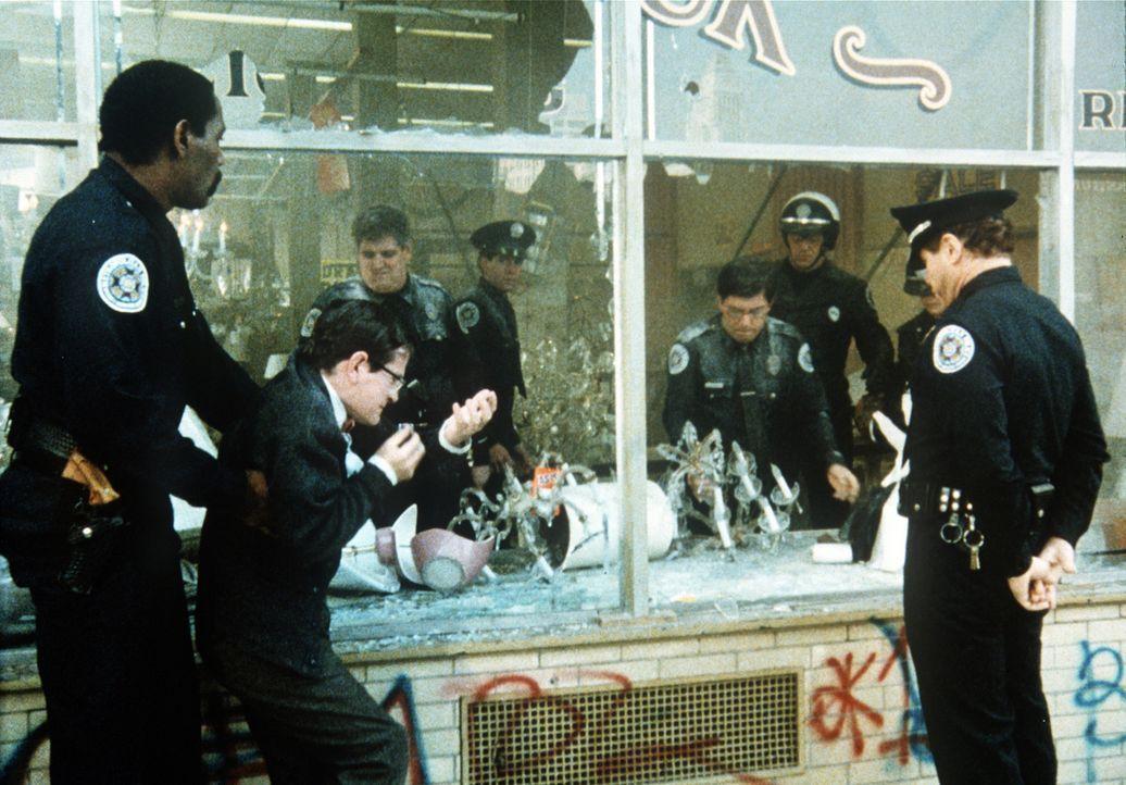 Bei den Einsätzen der Mannen von der Police Academy geht so manches zu Bruch: Officer Hightower (Bubba Smith, l.) treibt die Geschäftsbesitzer (Tim... - Bildquelle: Warner Bros.