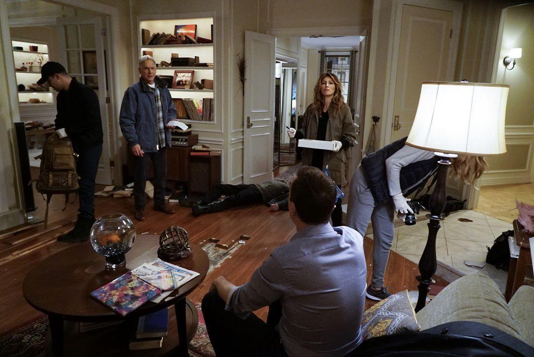 Torres (Wilmer Valderrama, l.), Gibbs (Mark Harmon, 2.v.l.), Quinn (Jennifer Esposito, 2.v.r.) und Bishop (Emily Wickersham, r.) untersuchen McGees... - Bildquelle: 2016 CBS Broadcasting, Inc. All Rights Reserved