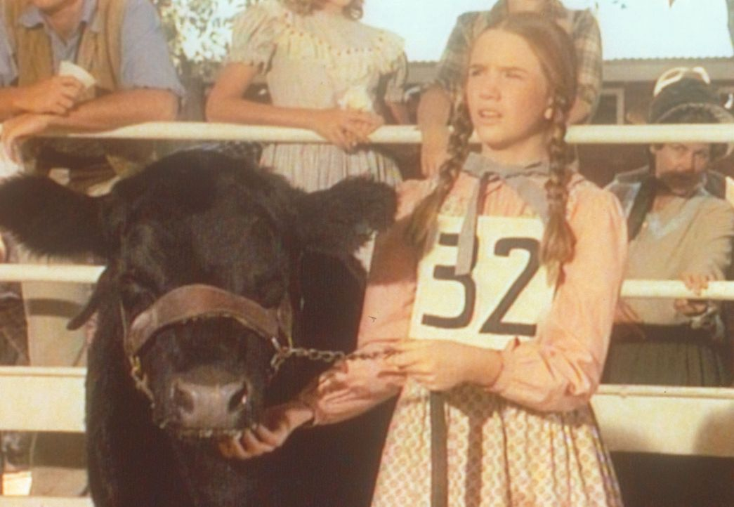 Während Charles den Ausreißer Albert sucht, kümmert sich Laura (Melissa Gilbert) um das Kälbchen ... - Bildquelle: Worldvision