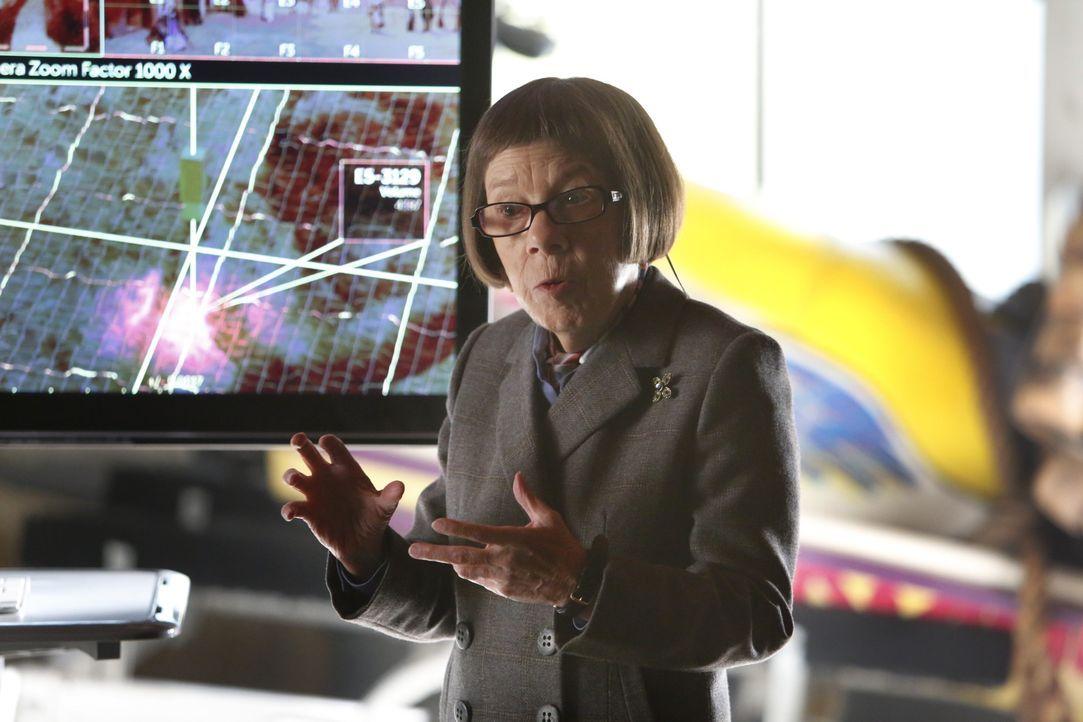 Kann Hetty Lange (Linda Hunt) dem Team helfen einen Kunstbetrug aufzuklären? - Bildquelle: Cliff Lipson 2014 CBS Broadcasting, Inc. All Rights Reserved / Cliff Lipson