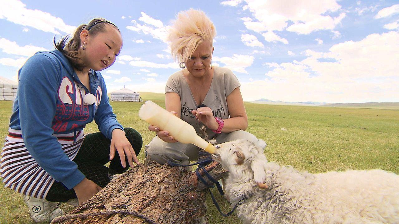 Ramona - Mongolei - 2 - Bildquelle: kabel eins