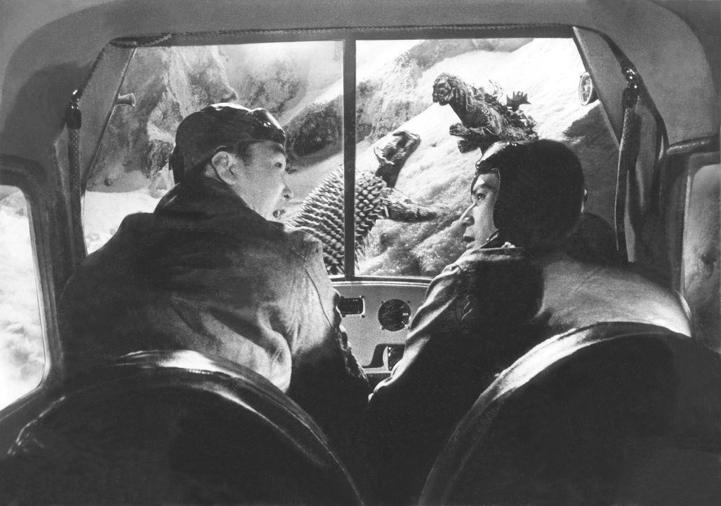 Nach einer Bruchlandung auf einer verlassenen Insel entdecken die Piloten Koji Kobayashi (Minoru Chiaki, r.) und Shoichi Tsukioka (Hiroshi Koizumi,... - Bildquelle: 1955 Toho Co. Ltd.