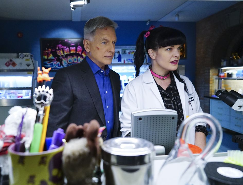 Megan, die Tochter des Secretary of the Navy, Sarah Porter, wurde entführt. Das Team um Gibbs (Mark Harmon, l.) und Abby (Pauley Perrette, r.) schli... - Bildquelle: Neil Jacobs 2016 CBS Broadcasting, Inc. All Rights Reserved / Neil Jacobs