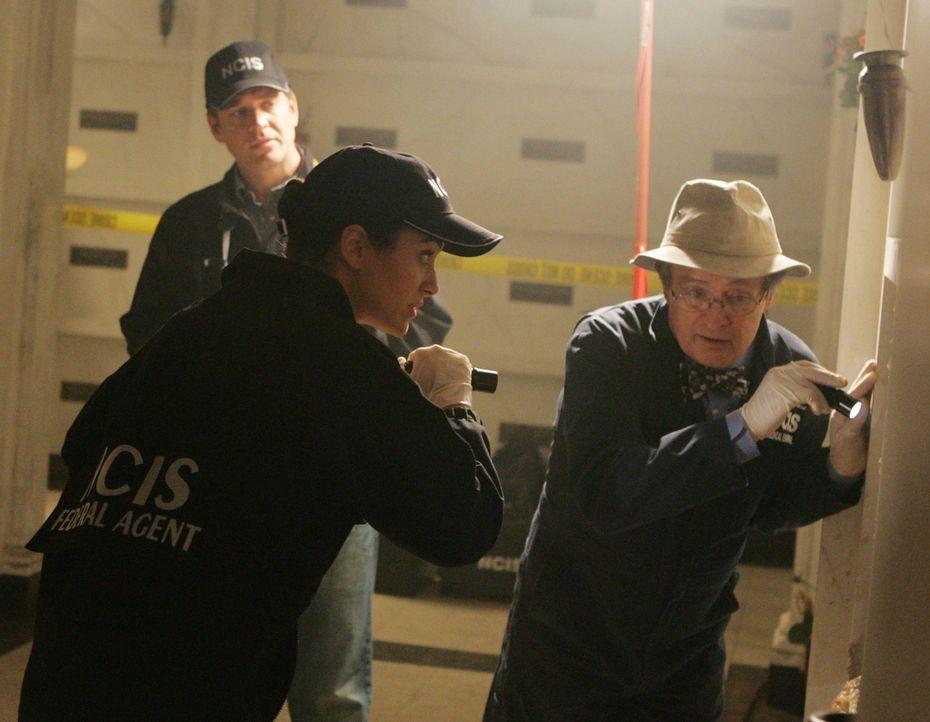 Arbeiten an einem neuen Fall: Ducky (David McCallum, r.), Tony (Michael Weatherly, l.) und Ziva (Cote de Pablo, M.) ... - Bildquelle: CBS Television