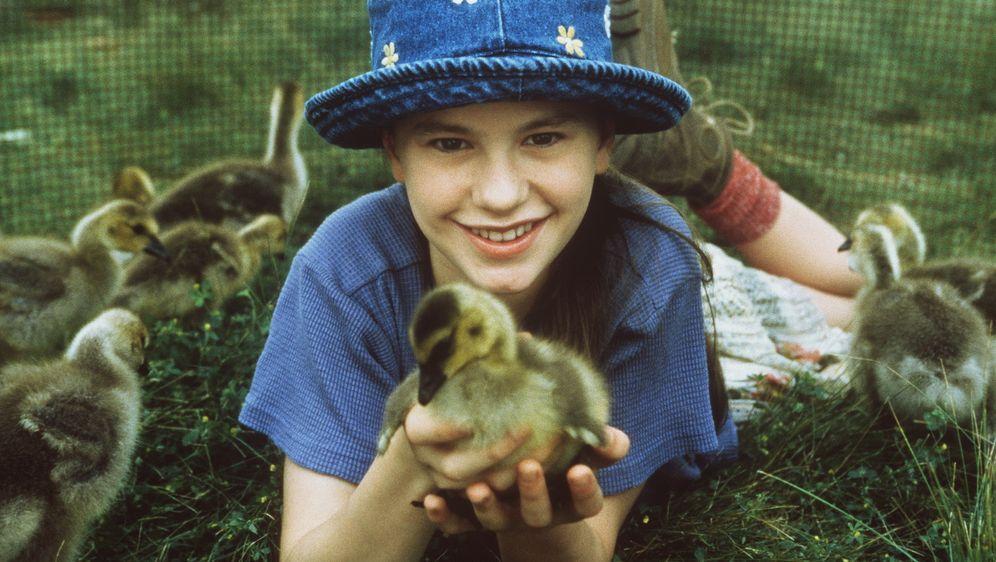 Amy und die Wildgänse - Bildquelle: Columbia Pictures