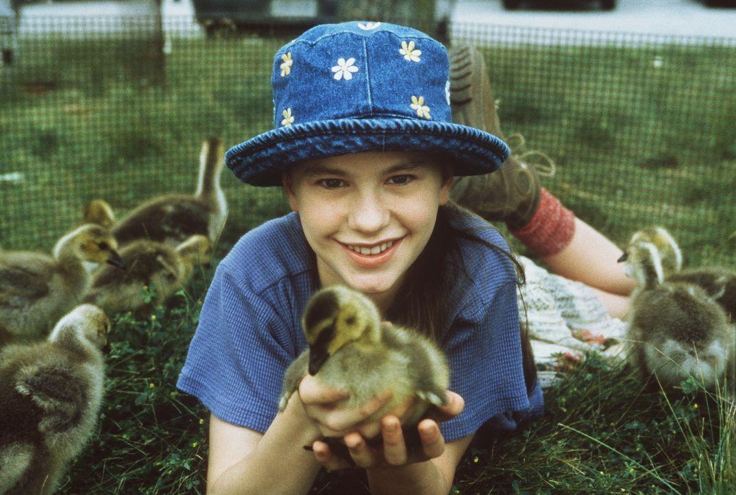 Nach dem Tod ihrer Mutter zieht die kleine Amy (Anna Paquin) zu ihrem Vater, der als Künstler und Flugzeugbauer auf dem Land lebt. Als sie sich eine... - Bildquelle: Columbia Pictures