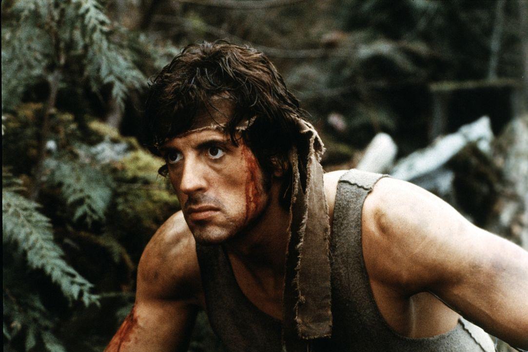 """Rambo (Sylvester Stallone) kehrt traumatisiert aus Vietnam zurück. Als Provinzsheriff Teasle und dessen Kollegen den """"Landstreicher"""" quälen, flieht... - Bildquelle: 1982 STUDIOCANAL. All Rights Reserved."""