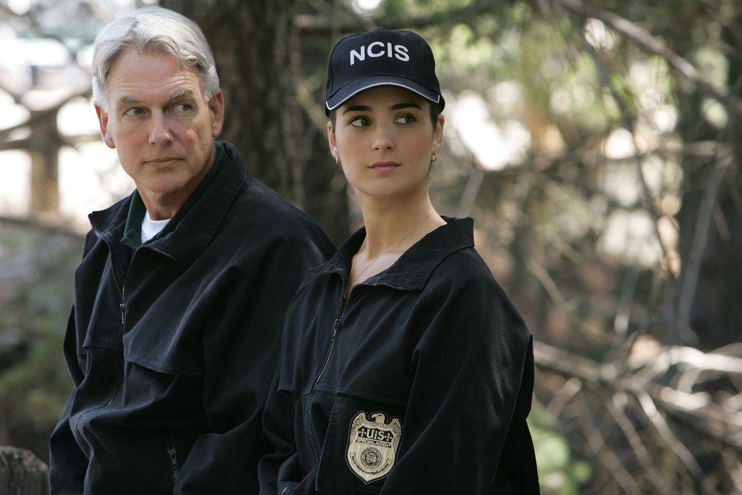 Versuchen den Fall des ermordeten Lieutenant Commander Carrie McLellan zu klären: Leroy Gibbs (Mark Harmon, l.) und Ziva David (Cote de Pablo, r.) .... - Bildquelle: CBS Television