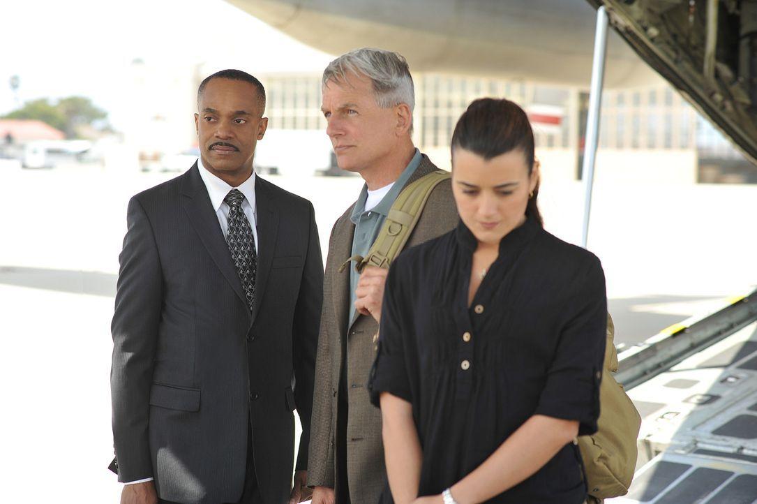 Der Fall bereitet ihnen Kopfzerbrechen: Leon Vance (Rocky Carroll, M.), Gibbs (Mark Harmon, M.) und Ziva (Cote de Pablo, r.) ... - Bildquelle: CBS Television