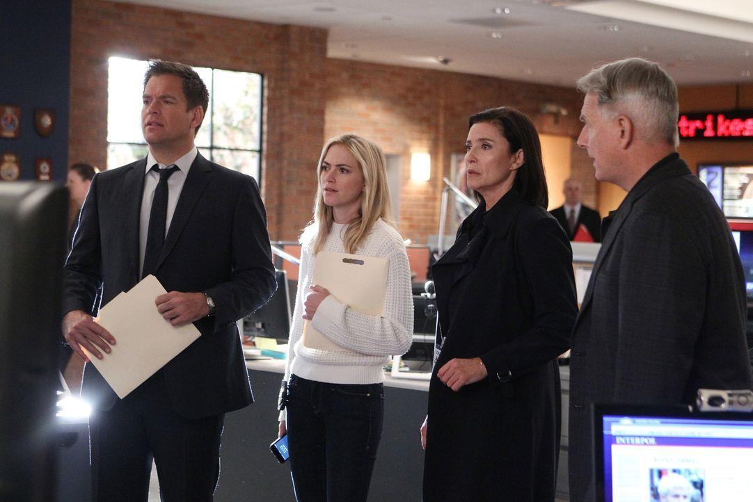 Die Suche nach einer globalen Terrorgruppe geht weiter: Tony (Michael Weatherly, l.), Bishop (Emily Wickersham, 2.v.l.), Gibbs (Mark Harmon, r.) und... - Bildquelle: Sonja Flemming CBS Television