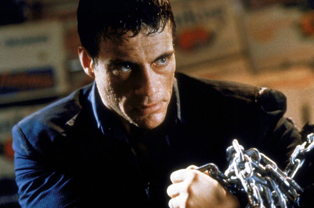 Riskiert alles: Marcus Ray (Jean-Claude van Damme) ... - Bildquelle: TriStar Pictures