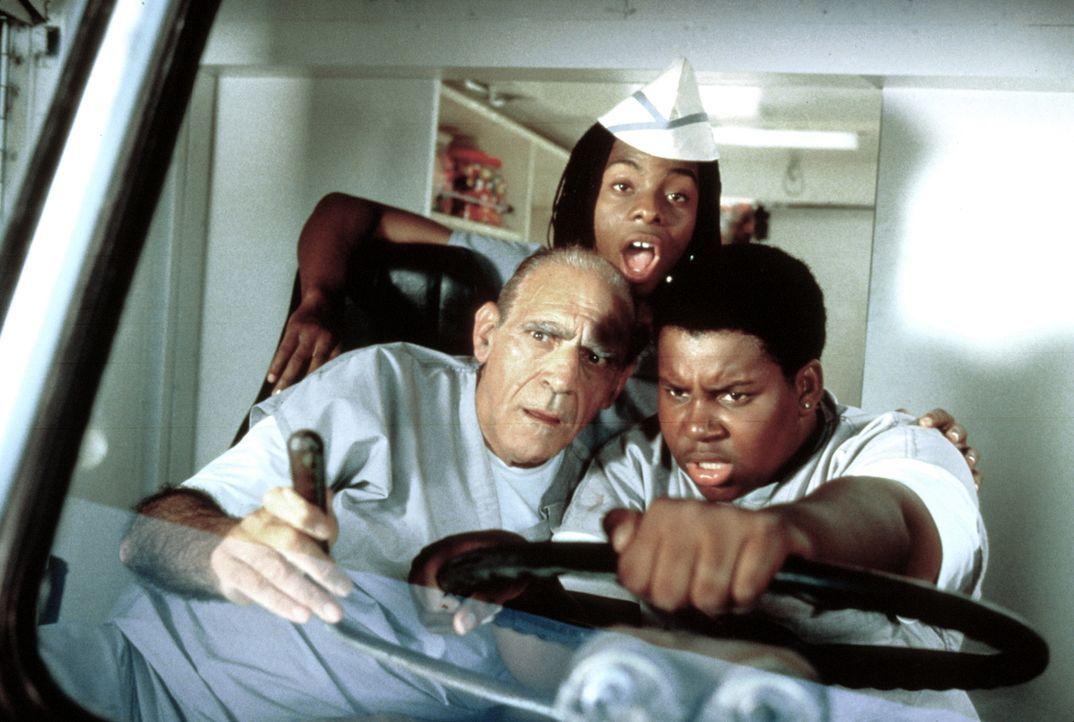"""Den dicken Dexter (Kenan Thompson, r.) und den durchgeknallten Ed (Kel Mitchell, M.) bringt so schnell nichts aus ihrem """"Chaos"""". Auch die neue Konku... - Bildquelle: Paramount Pictures"""