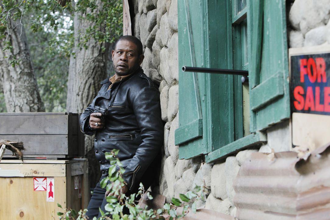 Gibt alles, um einen neuen Fall zu lösen: Sam (Forest Whitaker) ... - Bildquelle: ABC Studios