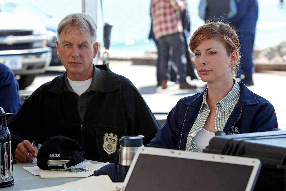 Müssen bei den Ermittlungen in einem neuen Fall zusammen arbeiten: Gibbs (Mark Harmon, l.) und Special Agent Abigail Borin (Diane Neal, r.) von der... - Bildquelle: CBS Television