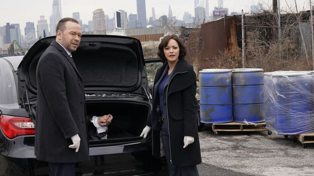 Blue Bloods - Blue Bloods - Staffel 10 Episode 14: Ein Cowboy In New York