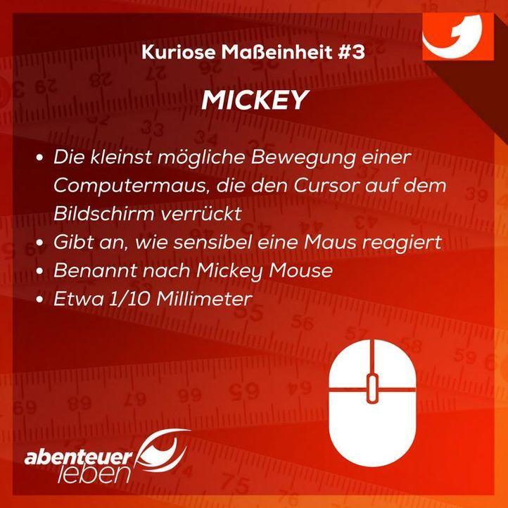 Mickey - Bildquelle: kabel eins