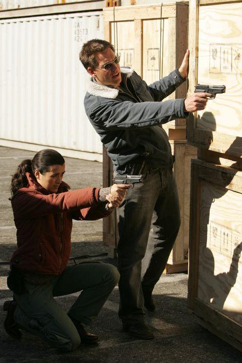 Bei einem neuen Auftrag verschwinden Tony (Michael Weatherly, l.) und Ziva (Cote de Pablo, r.) plötzlich spurlos ... - Bildquelle: TM &   2006 CBS Studios Inc. All Rights Reserved.