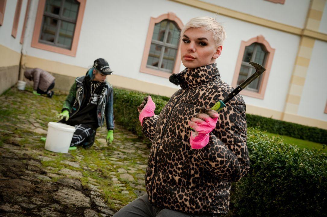 Sarah, l.; Johnny, r. - Bildquelle: Claudius Pflug Kabel Eins / Claudius Pflug
