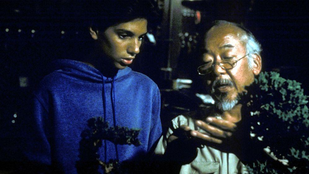 Karate Kid - Bildquelle: Columbia Pictures