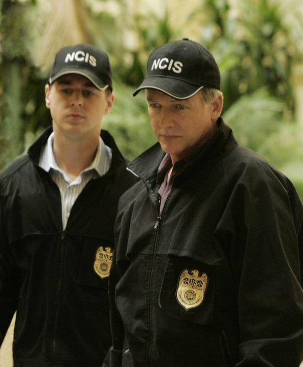 Während eines Empfangs stürzt ein Mann aus dem sechsten Stock eines Hotels in die Lobby und stirbt. Gibbs (Mark Harmon, r.) und McGee (Sean Murray,... - Bildquelle: CBS Television